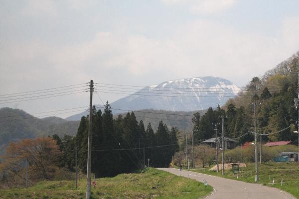 keyaki-001637s.jpg