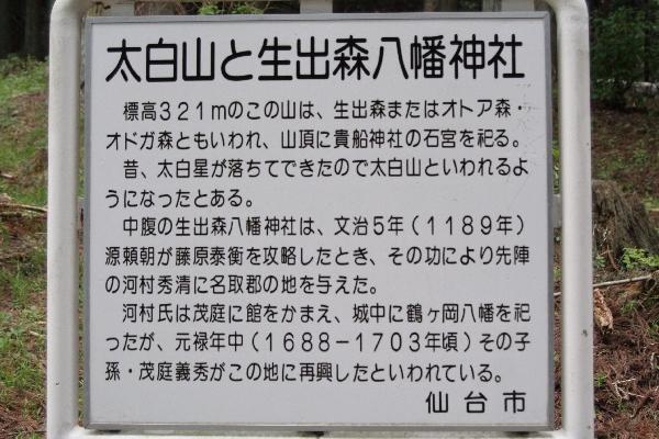 keyaki-001665s.jpg