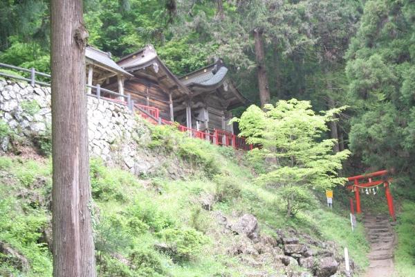 keyaki-001670s.jpg