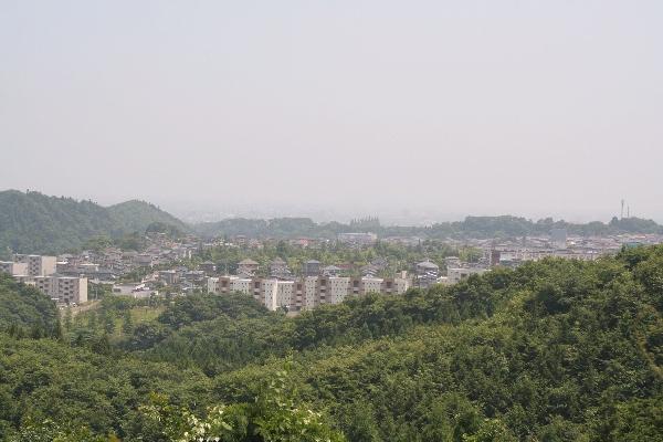 keyaki-001833s.jpg