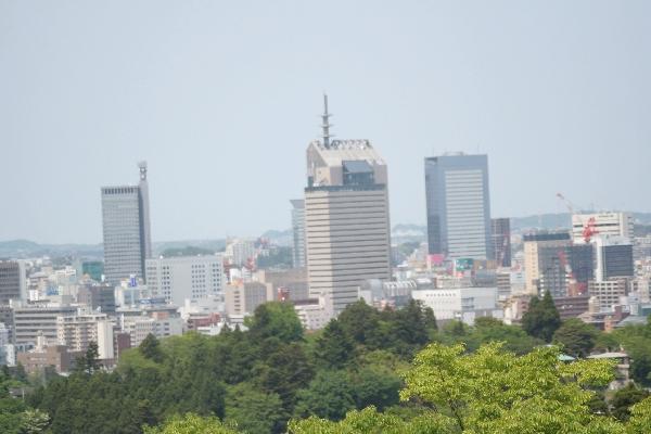 keyaki-001846s.jpg