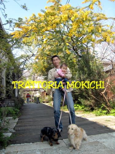 TRATTORIA MOKICHI