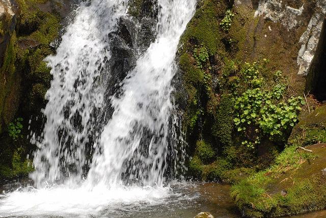 熊押し滝1