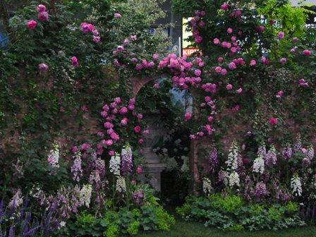 美しい庭2