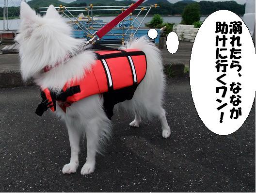 八幡平アジ0022