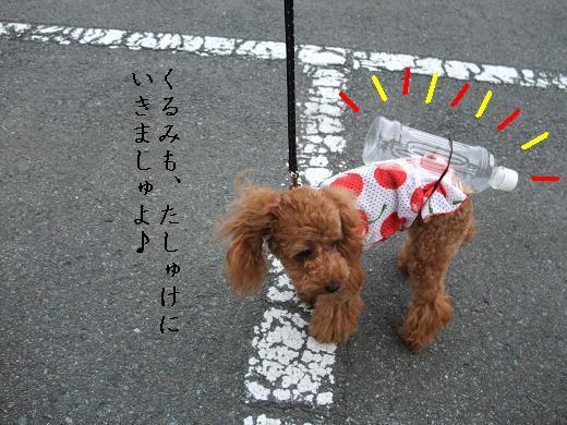 八幡平アジ0076