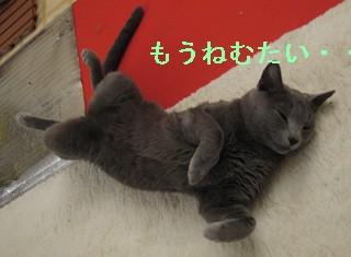 3シンおやすみ