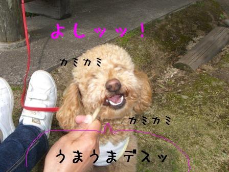CIMG3415.jpg