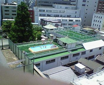NEC_0366.jpg
