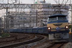 6-30_fujibusa.jpg