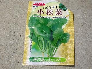 小松菜H20.5.6