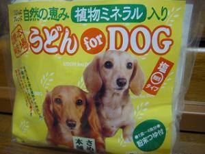 うどん for DOG