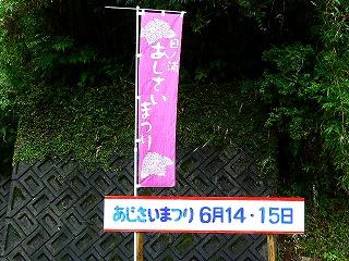 P1880452.jpg