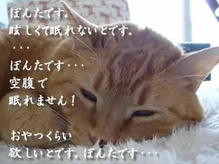 ~♪・・・ひ○しです。 (2)