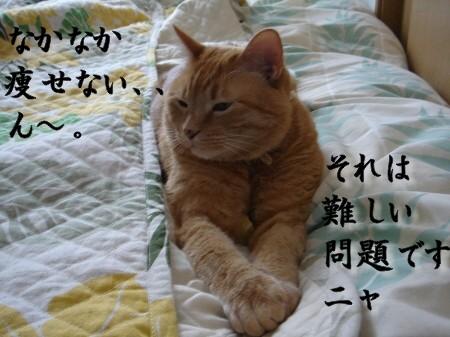 お悩み相談室! (2)