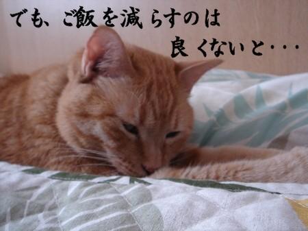 お悩み相談室! (3)