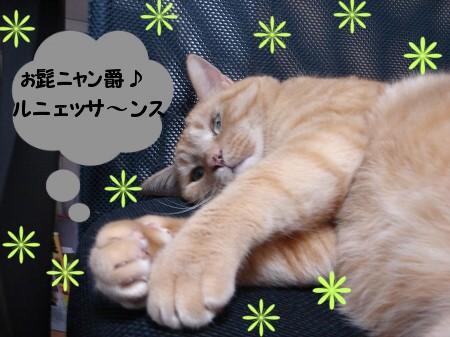 ぉ髭男爵?