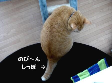 踏んじゃったらどうしよぉ~!? (1)