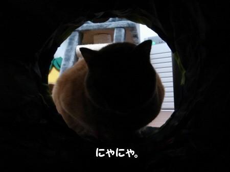 トンネルの魅力! (2)