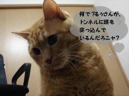 トンネルの魅力! (4)