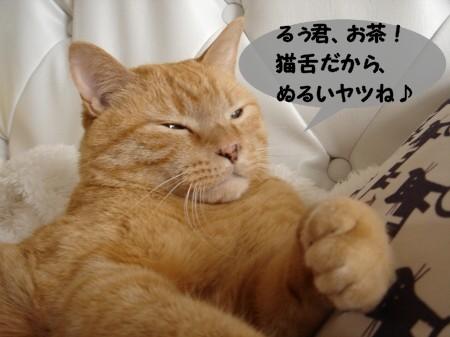 社長っぽいのはどうして? (2)