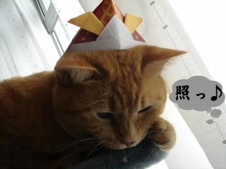 ぽんたの日? (1)