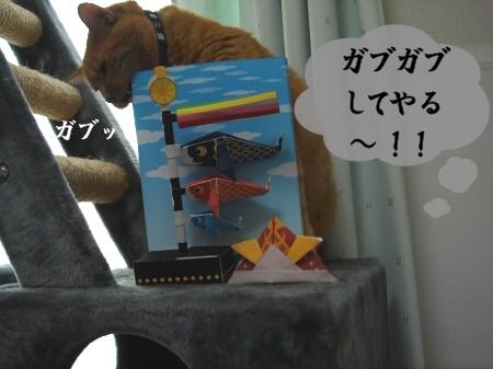 ぽんたの日? (3)
