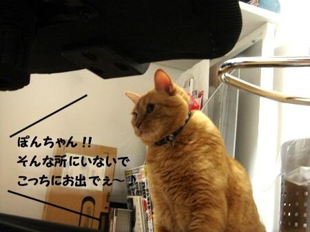 ハテナ? (1)