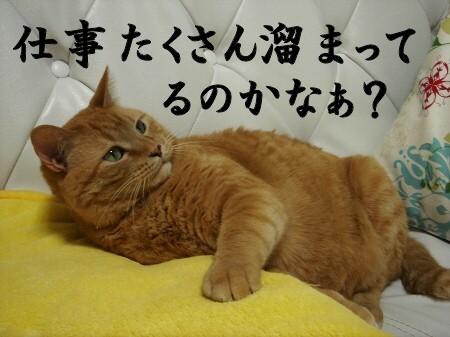 あ~明日はお仕事かぁ~。 (4)