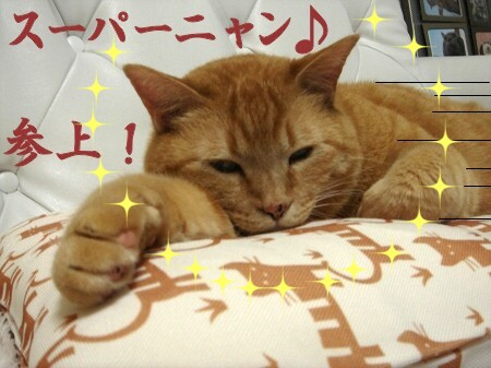 1・2・3・ぽんた!! (3)