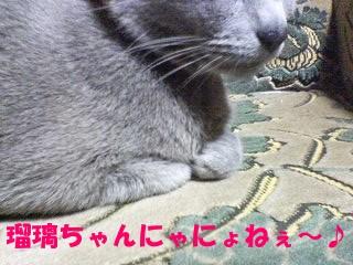 瑠璃ちゃんにゃにょねぇ~♪ (6)
