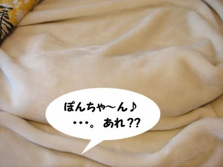 ココにいたのか! (1)