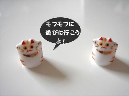 豆猫で遊ぶ。 (1)