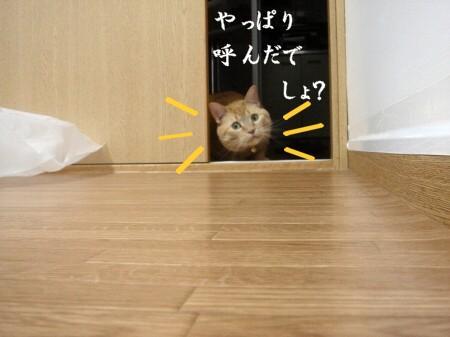 あの・・・お呼びでしょうか? (4)