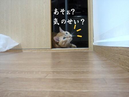 あの・・・お呼びでしょうか? (6)