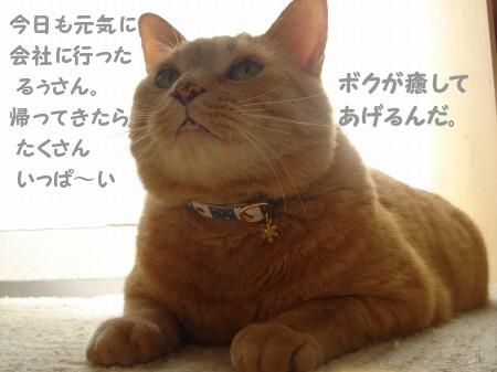 おつかれちゃん♪ (1)