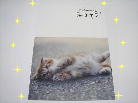 猫って♪映画って♪ほんとぉぉぉ~にいいもにょですね! (1)