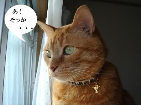 鼠先輩の歌が・・・ぽっぽ♪ (4)
