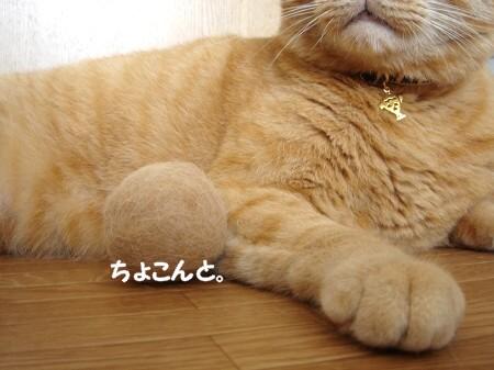 ぽん玉報告! (7)