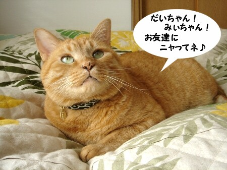 ぽんた! (1)
