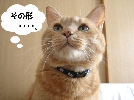 ひょうたんから!って!! (2)