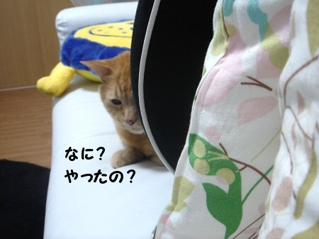 睡眠を邪魔する者 (3)