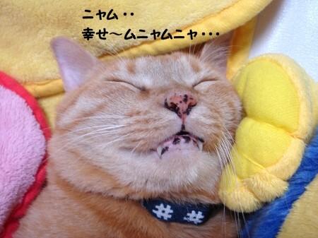 顔面蹴られてもぐっすり! (4)