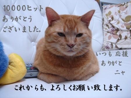 ブログの顔 (1)