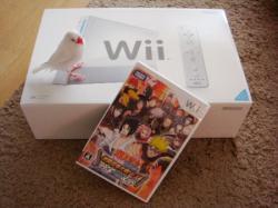 Wiiと白文鳥てんちゃん