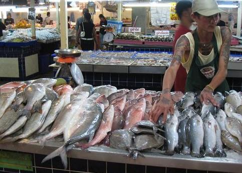 魚売り場 027