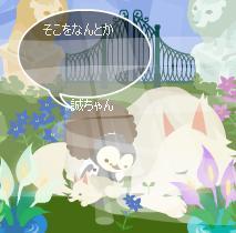 62_20080427134459.jpg