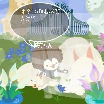 64_20080427135007.jpg