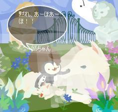 68_20080427143507.jpg