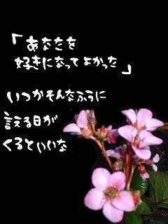 409_p.jpg